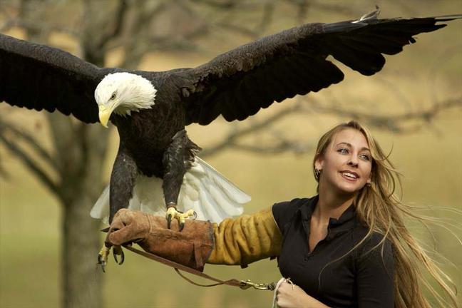 eagle_handler.jpg